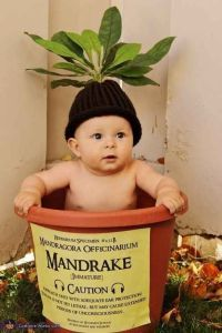 Cute-Halloween-costumes-baby